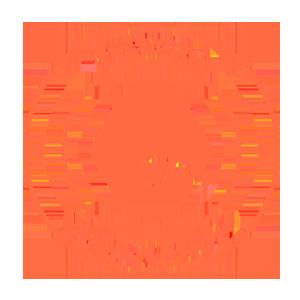 INS_logo_300x300